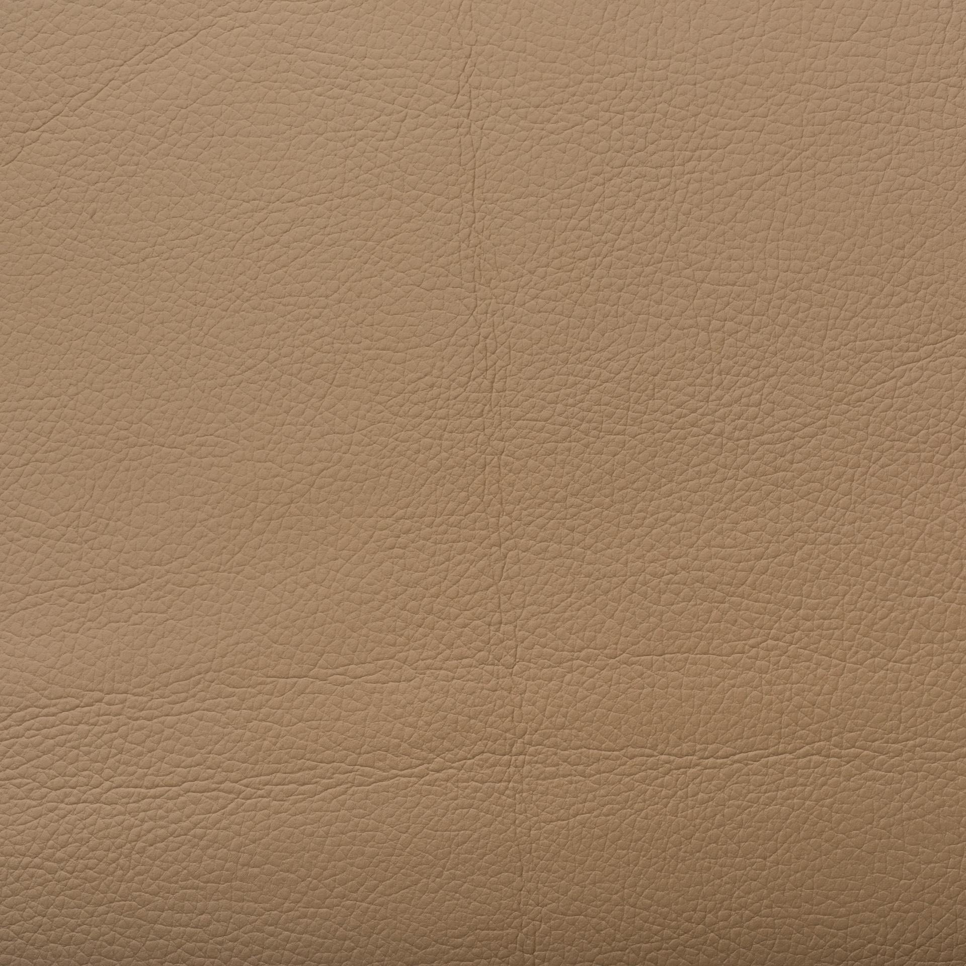 Коллекция ткани Леонардо Каппеллини 02 CARAMEL APPLE,  купить ткань Кож зам для мебели Украина