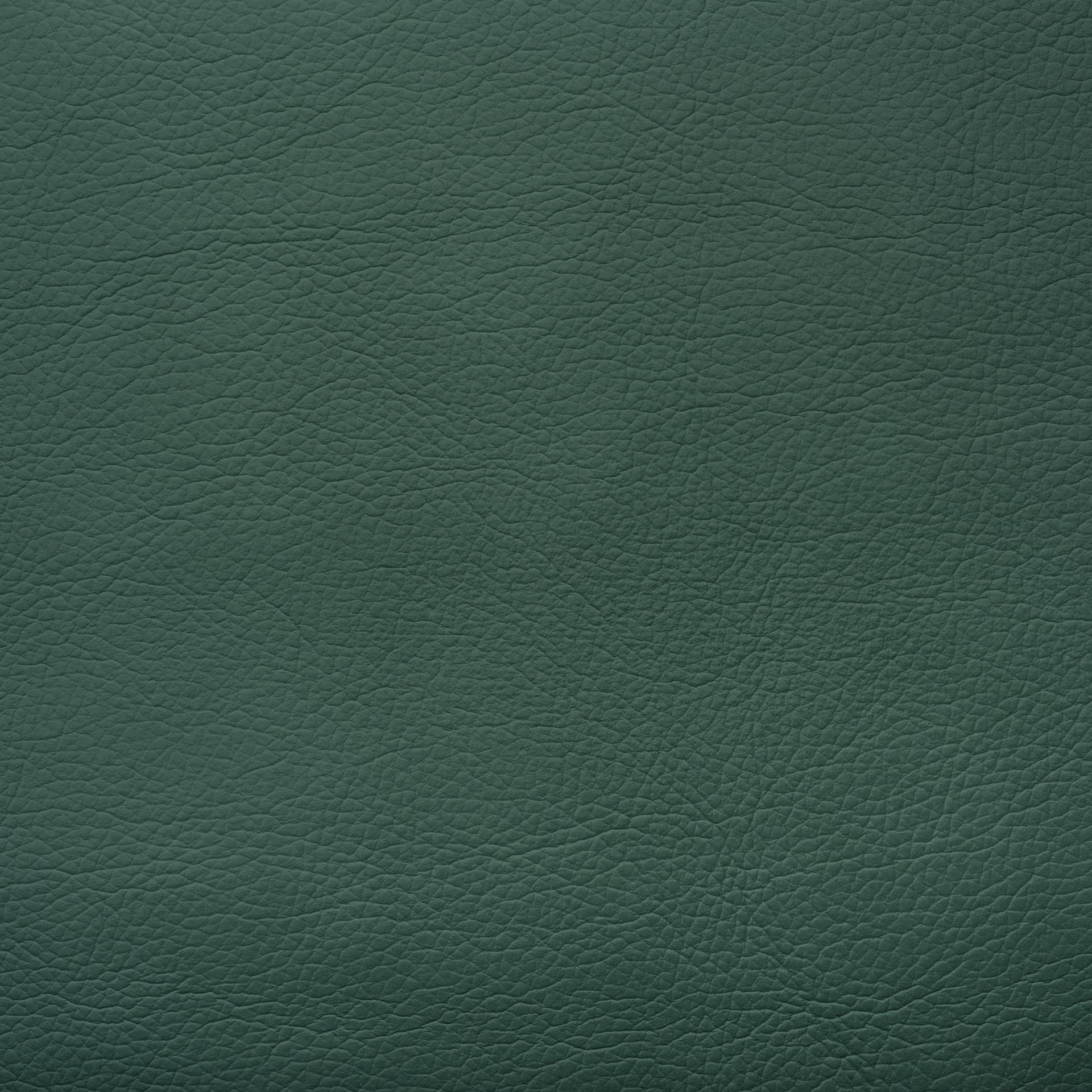 Коллекция ткани Леонардо Каппеллини 08 FROZEN LAKE,  купить ткань Кож зам для мебели Украина