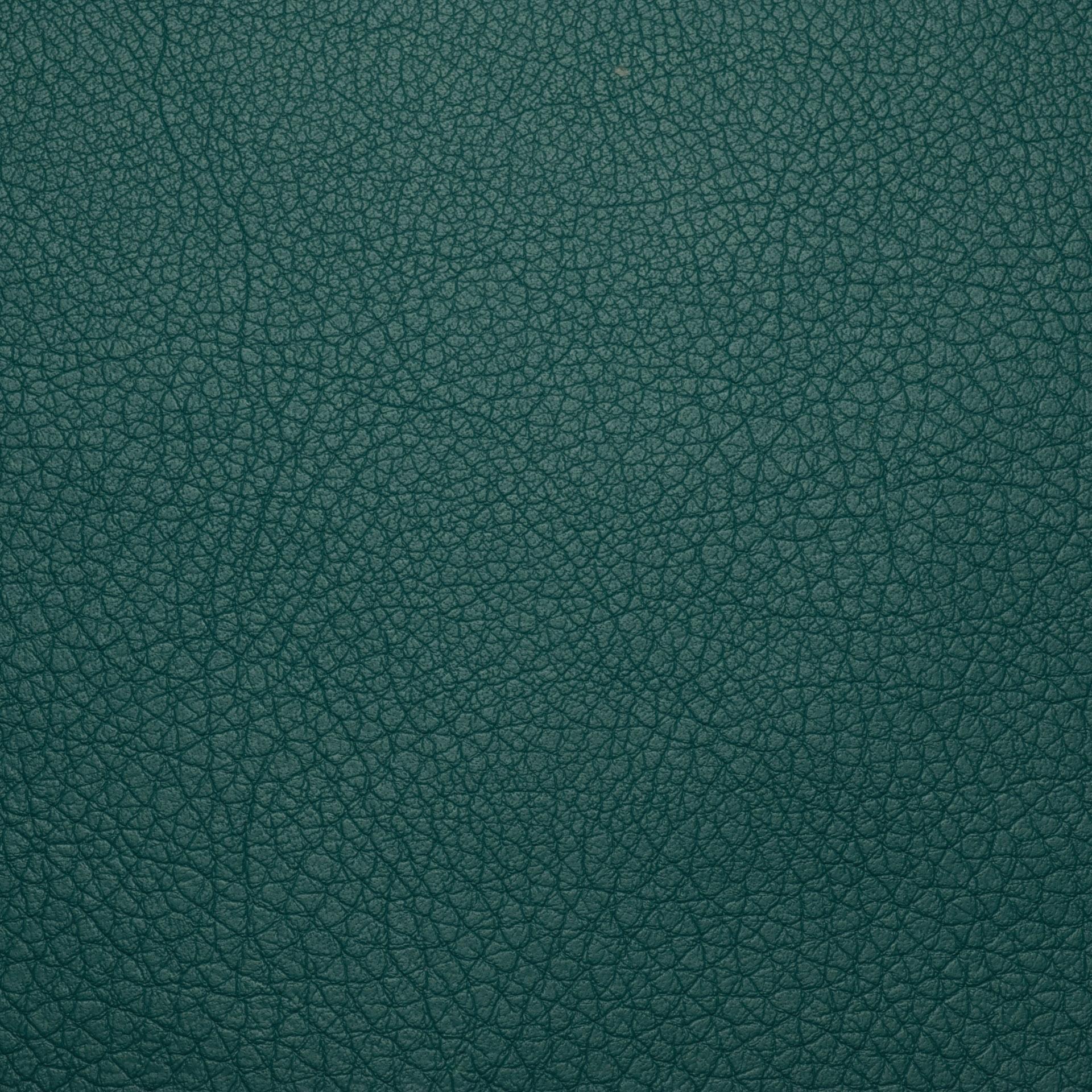 Коллекция ткани Софитель 07 Sea Green,  купить ткань Кож зам для мебели Украина