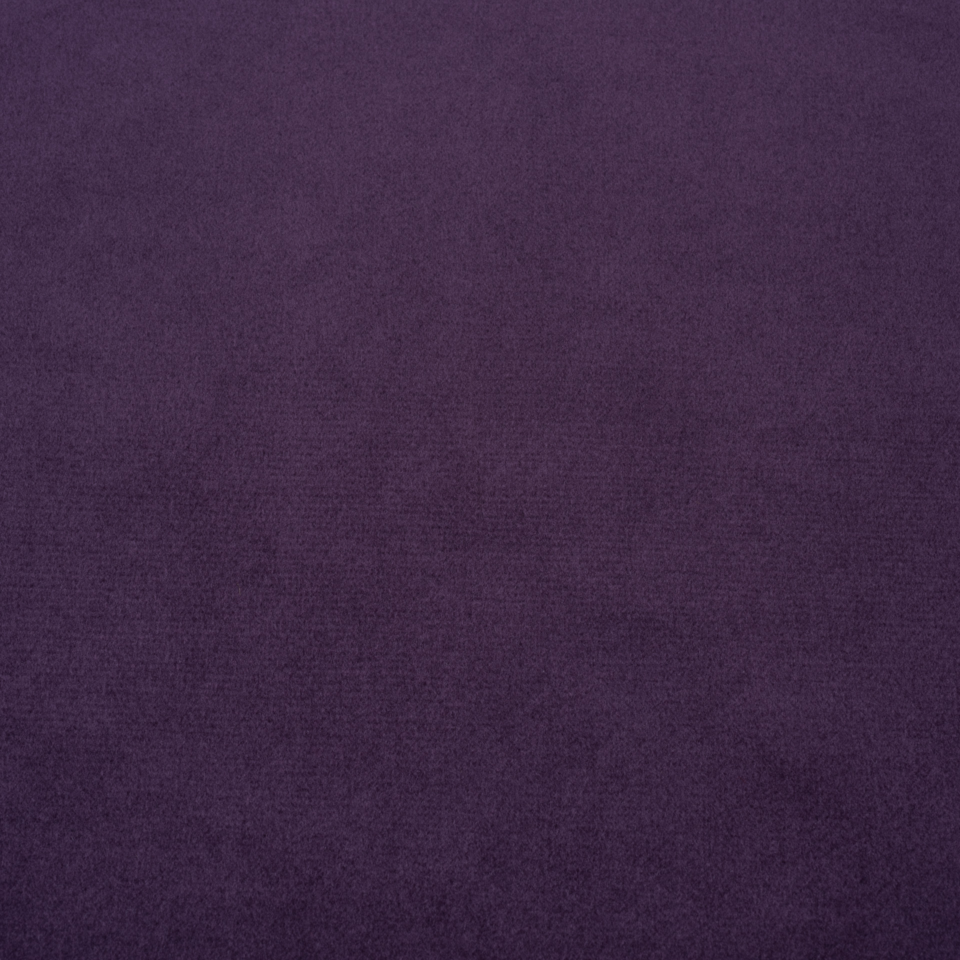 Коллекция ткани Багира 10 DARK PURPLE,  купить ткань Велюр для мебели Украина