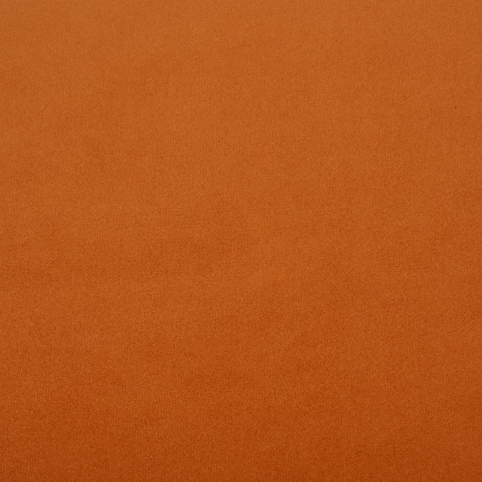 Коллекция ткани Багира 24 BABY CARROT,  купить ткань Велюр для мебели Украина