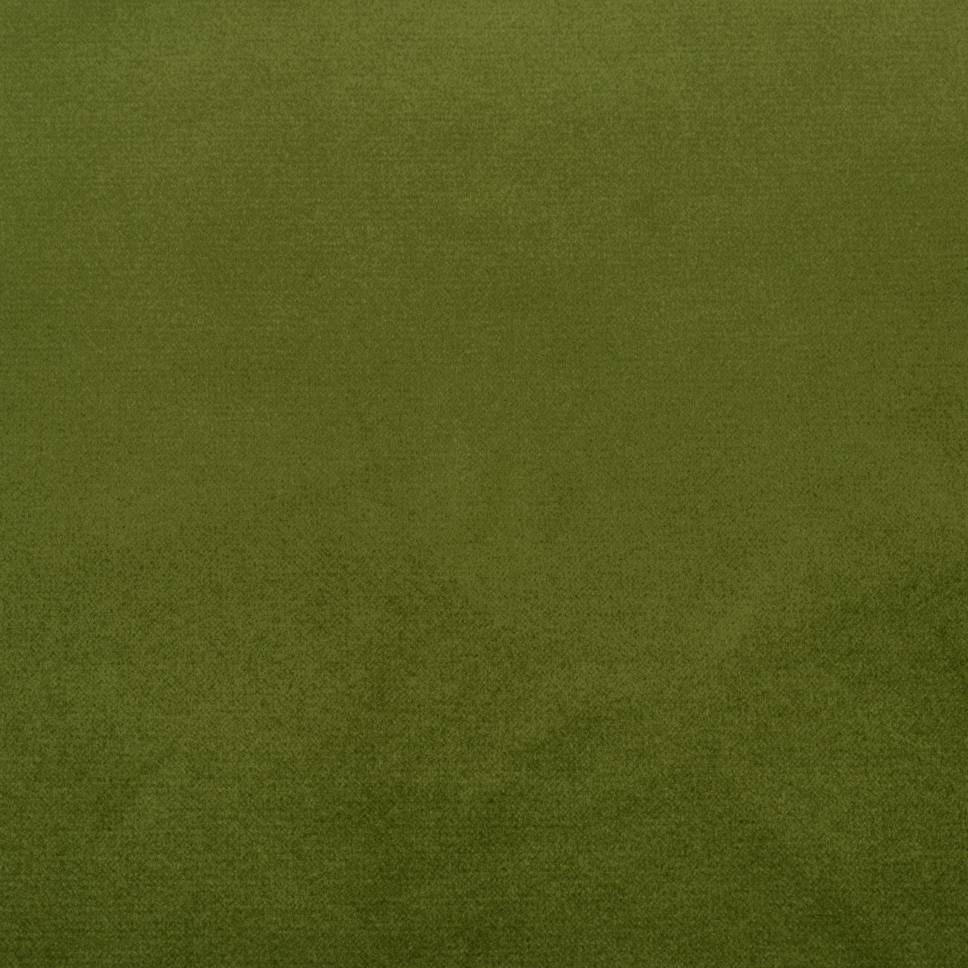 Коллекция ткани Багира 25 FOREST GREEN,  купить ткань Велюр для мебели Украина