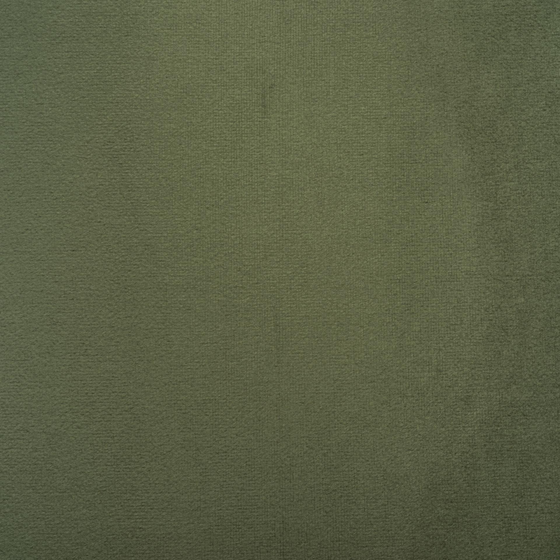 Коллекция ткани Багира 36 DARK GREEN,  купить ткань Велюр для мебели Украина