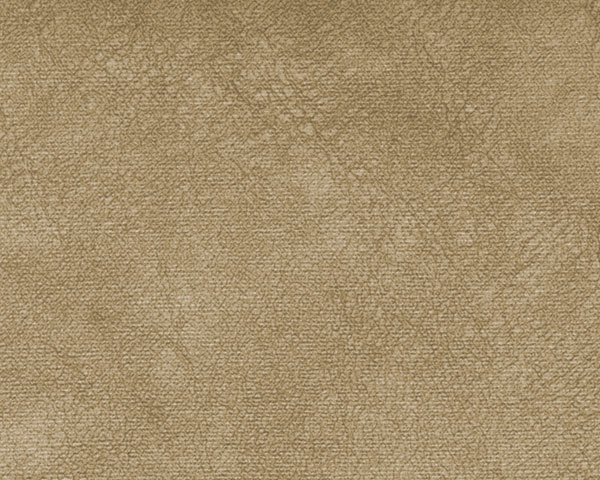 Коллекция ткани WR BEIGE,  купить ткань Велюр для мебели Украина
